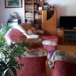 casa dues plantes i baixos en venda al Berguedà-sala-Buscallà immobiliària-vc162