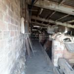 Finca rústica, casa amb hort de lloguer al Berguedà: granja porcs-Buscallà immobiliària-lf165