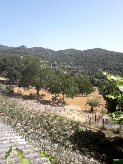Finca rústica, casa amb hort de lloguer al Berguedà: hort-Buscallà immobiliària-lf165